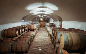 Wine Cellar Goriska Brda